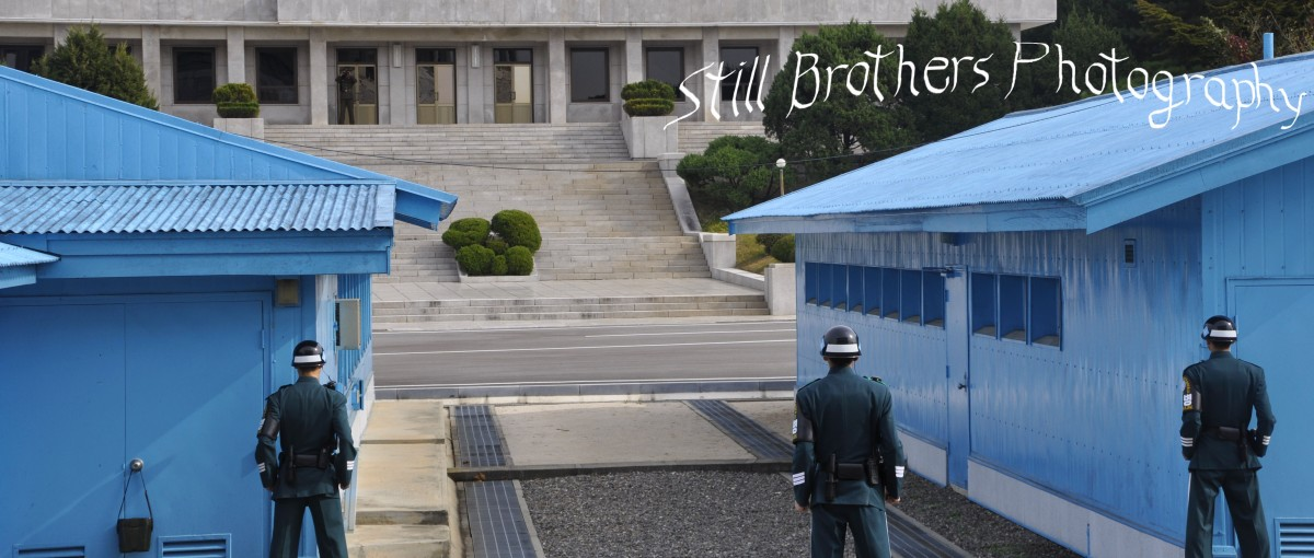 Remnants of the Korean War at the DMZ
