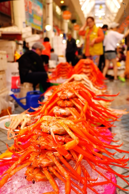 Soon to be dinner at Sokcho's fish market