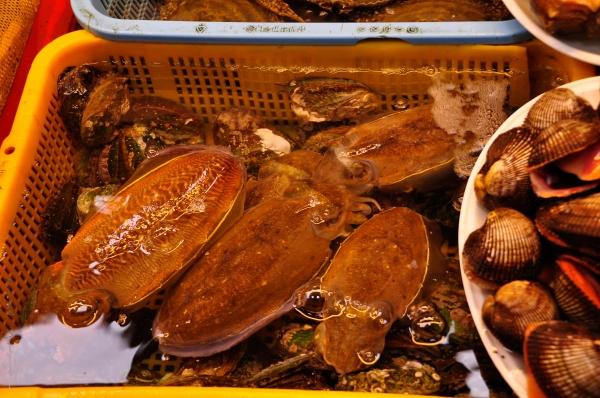 Busan Fish Market-2