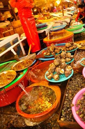 Busan Fish Market-9